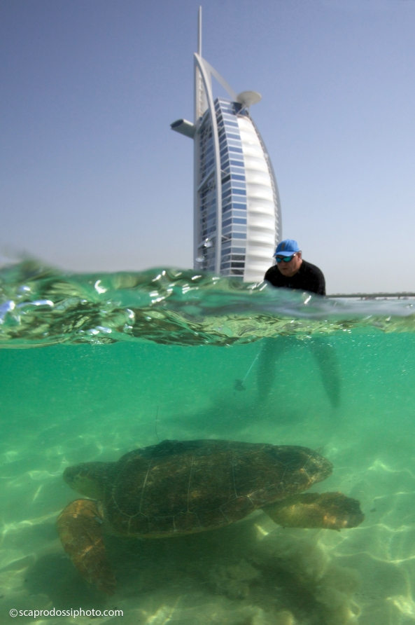 sponsored by Burj Al Arab