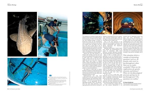 photographs by warren baverstock - article by Nikki Schriber - copyright VISION Managazine